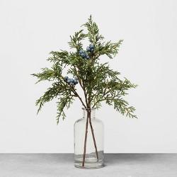 Juniper Fixed Arrangement - Hearth & Hand™ with Magnolia