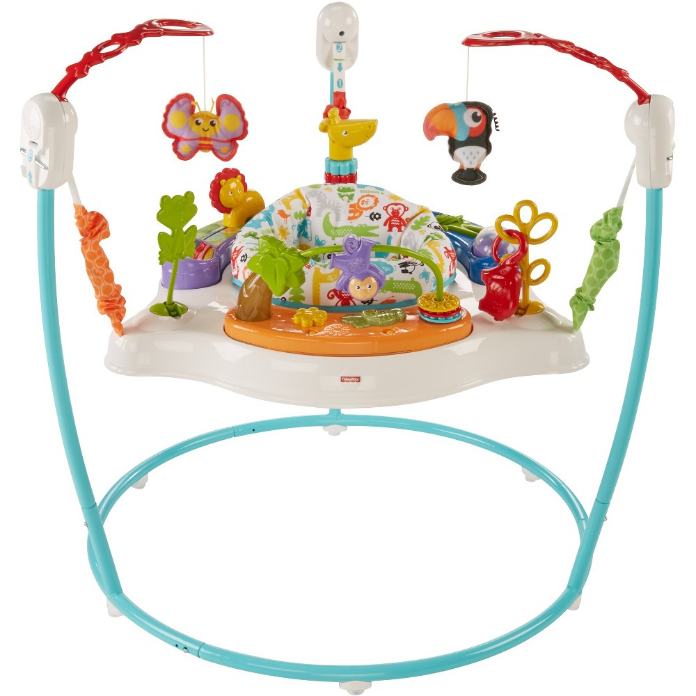 Image of Fisher-Price Animal Activity Jumperoo