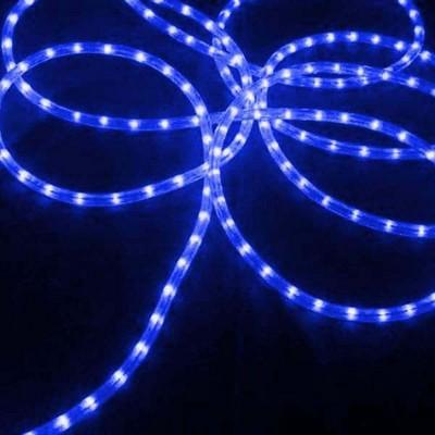 J. Hofert Co Commercial Grade Christmas Rope Light Set White Cord - Blue