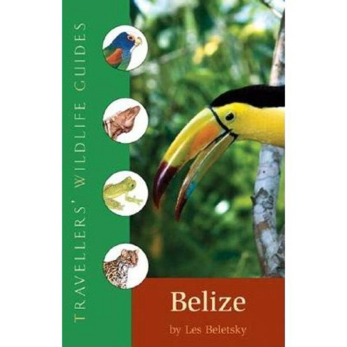 Belize & Northern Guatemala - (Travellers' Wildlife Guides) by  Les D Beletsky (Paperback) - image 1 of 1