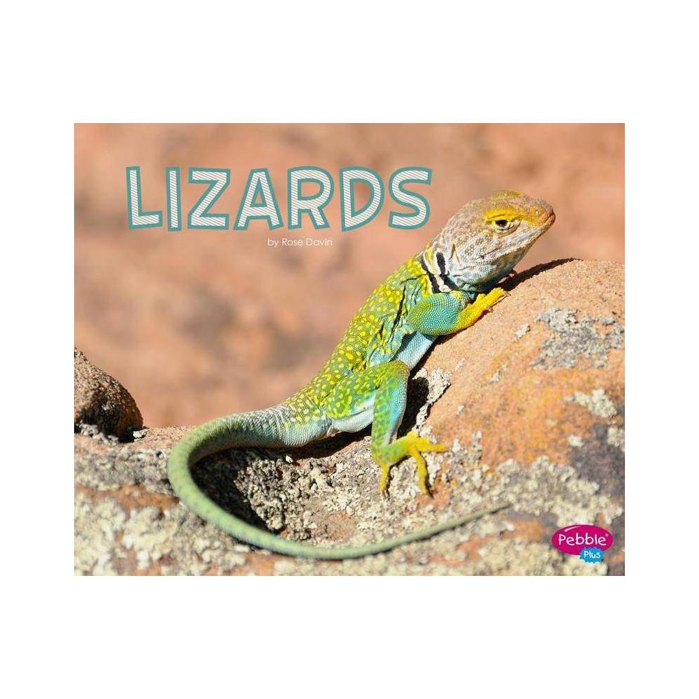 Lizards Meet Desert Animals By Rose Davin Paperback