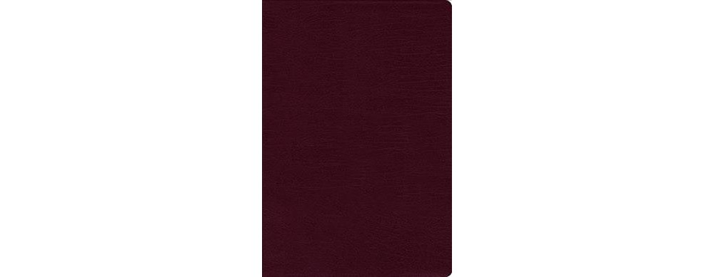 Holy Bible : New International Version, Burgundy, Bonded ...