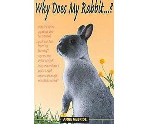 Why Does My Rabbit? (Paperback) (Anne McBride) - image 1 of 1
