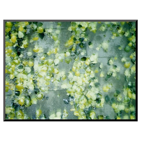 Art.com Peas in Water - Mounted Photo - image 1 of 2