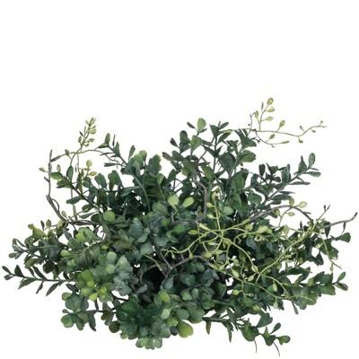 "Sullivans Blue Boxwood Orb Decorative Filler 6""H Green"