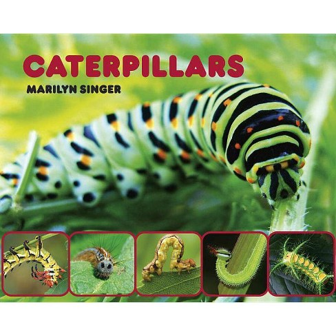 Caterpillars - by  Marilyn Singer (Hardcover) - image 1 of 1