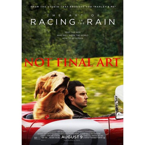 The Art Of Racing In The Rain (DVD) - image 1 of 1