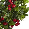 """Berry Boxwood Wreath (24"""") - Nearly Natural - image 3 of 3"""