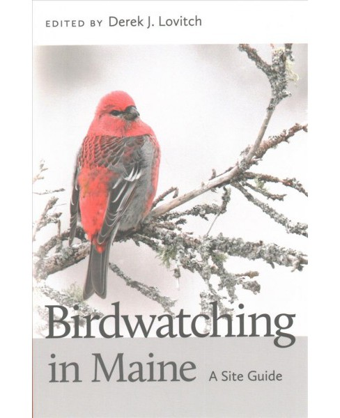 Birdwatching in Maine : A Site Guide (Paperback) - image 1 of 1