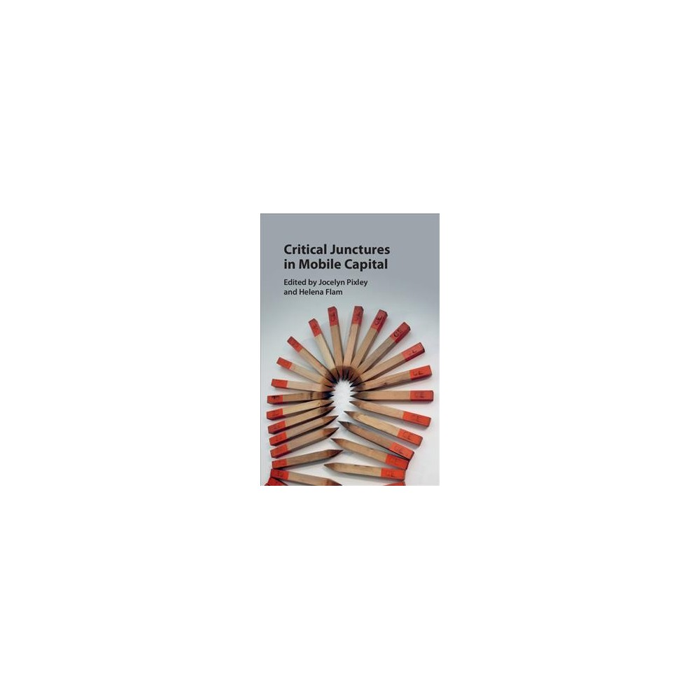 Critical Junctures in Mobile Capital - (Hardcover)