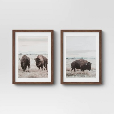 "(Set of 2)12"" x 16"" Buffalo Framed Prints - Threshold™"