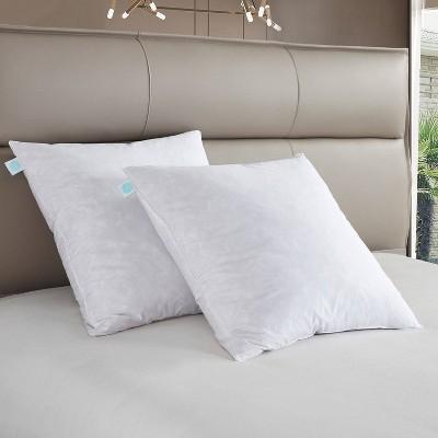 Euro 2pk Firm Feather Down Bed Pillow - Martha Stewart
