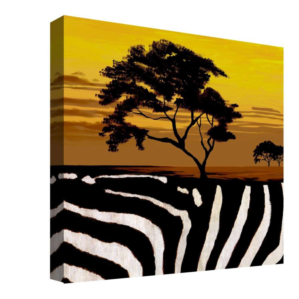 African Sunset Decorative Canvas Wall Art 16