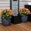 "2pc Homestead Fiber Clay Planter Set - 12"" - Dark Gray - Sunnydaze Decor - image 4 of 4"