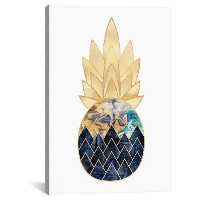 Precious Pineapple I by Elisabeth Fredriksson Canvas Print (26 x 18 )