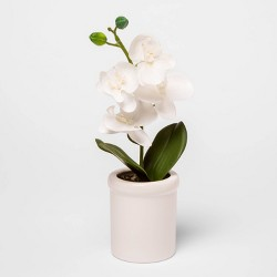 "12.5"" x 4.5"" Artificial Orchid in Ceramic Pot White - Threshold™"