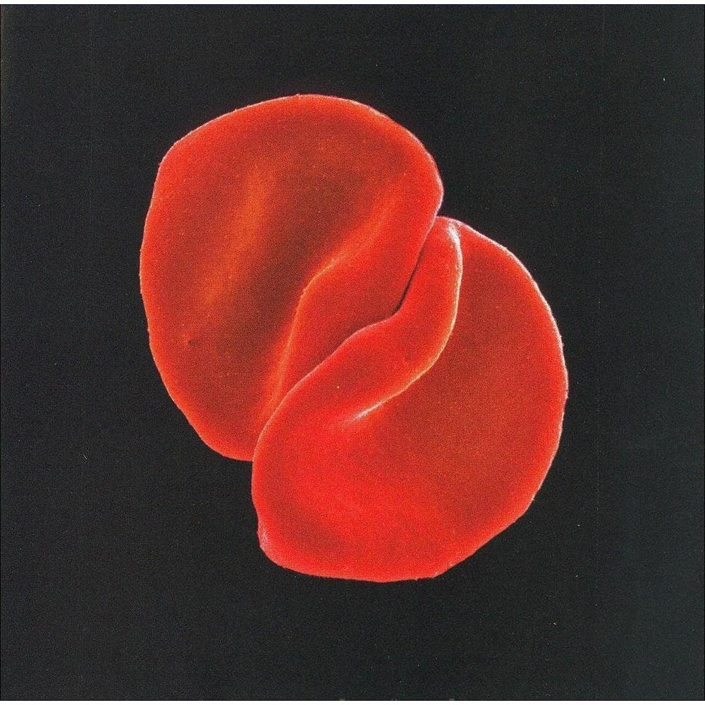 Peter Gabriel - Scratch My Back (CD)