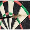 Franklin Sports Pro Wire Steel Tip Dartboard - image 3 of 4