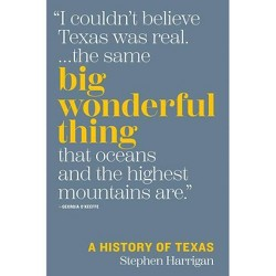 Big Wonderful Thing - by  Stephen Harrigan (Hardcover)