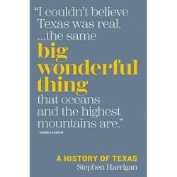 Big Wonderful Thing - by  Stephen Harrigan (Hardcover)