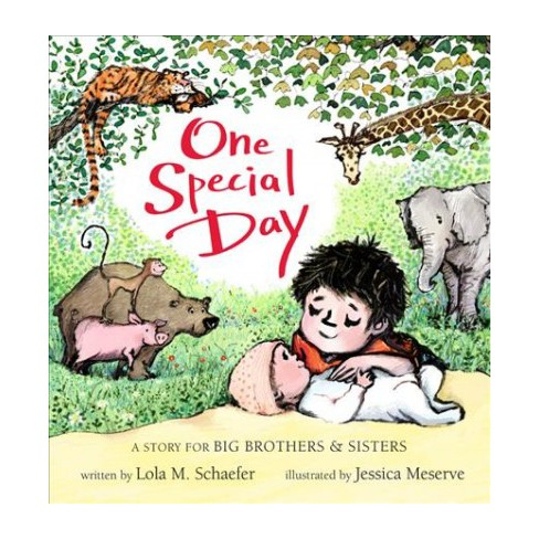 One Special Day - by  Lola M Schaefer (Board_book) - image 1 of 1
