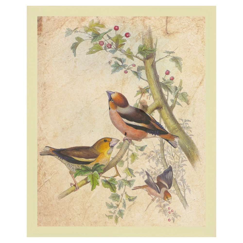 Bring cheerful flair to your home or office decor with the Autumn Birds Wall Art from PTM Images. Designed with beautiful birds perched or on tree branches laden with red fruits and finished with a yellow-tone frame, this framed digital art work will liven up any wall. Plus, with the D-ring back, you can hang it quickly and easily. Pattern: Shapes.