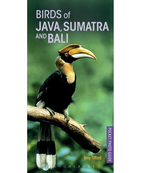 Birds of Java, Sumatra and Bali -  (Pocket Photo Guides) by Tony Tilford (Paperback) - image 1 of 1