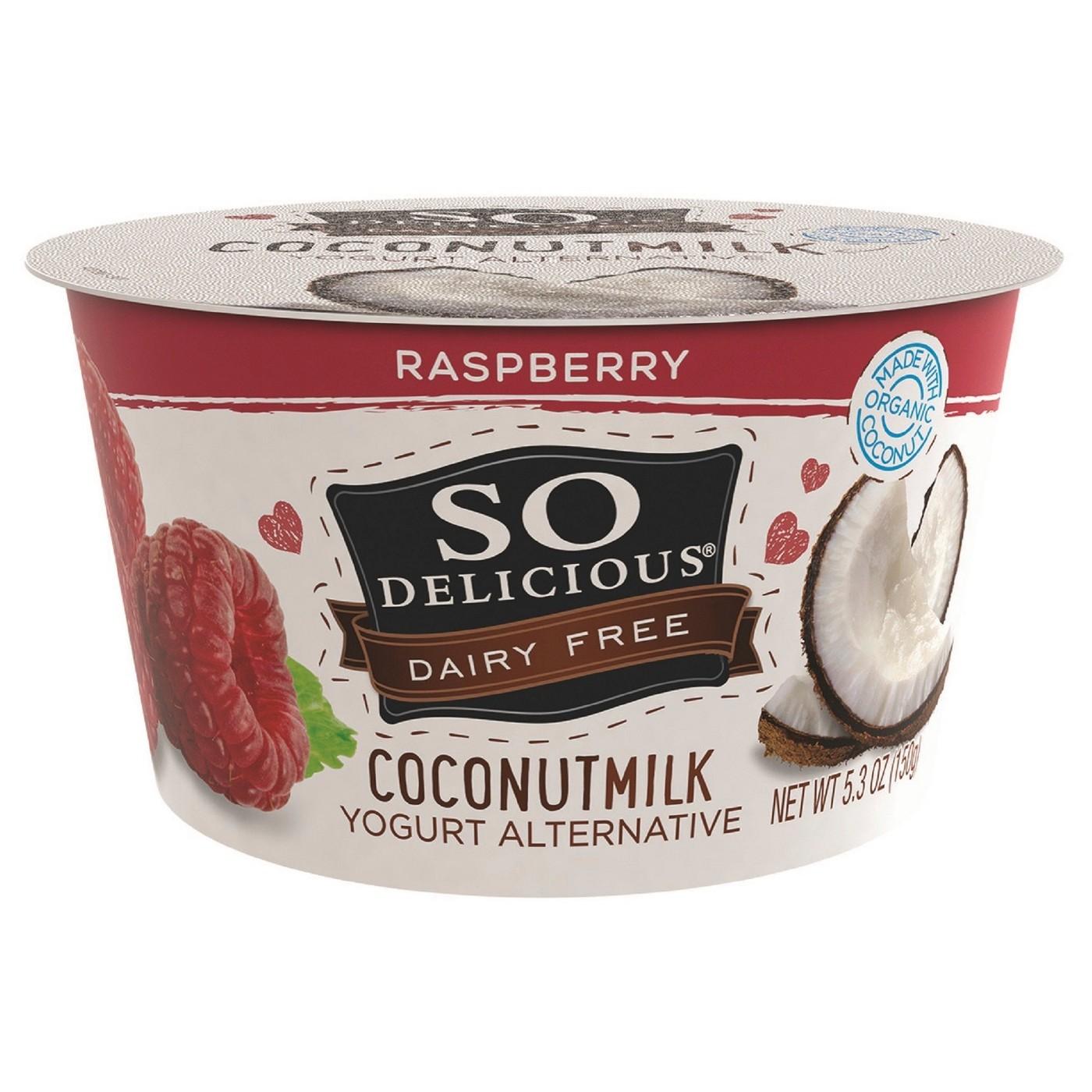 So Delicious Dairy free Coconut Milk Raspberry Yogurt - 5.3oz - image 1 of 1