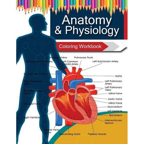 Anatomy & Physiology Coloring Workbook Books - by Dr Veronica W Fields &  Anatomy Coloring Book