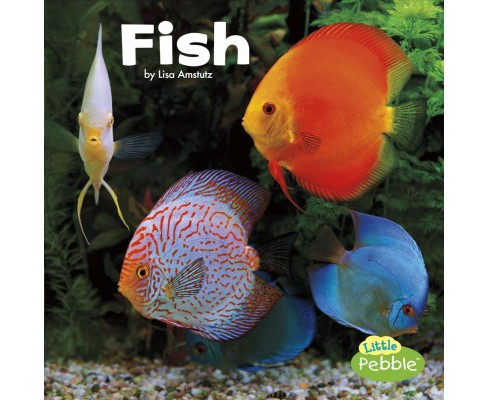 Fish -  (Our Pets) by Lisa J. Amstutz (Paperback) - image 1 of 1