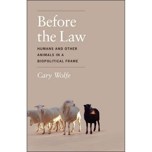 Before the Law - by  Cary Wolfe (Paperback) - image 1 of 1
