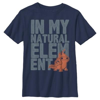 Boy's Frozen 2 Natural Element Large Text T-Shirt