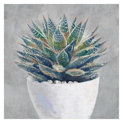 30 x30  Potted Succulent I By Studio Arts Art On Canvas - Fine Art Canvas