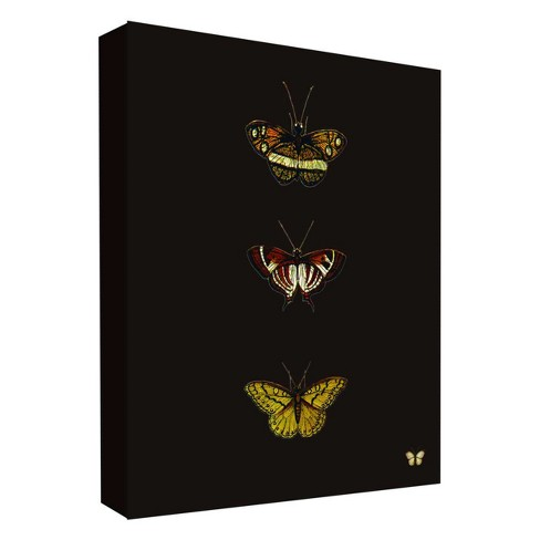"Butterfly Portrait II Decorative Canvas Wall Art 11""x14"" - PTM Images - image 1 of 1"