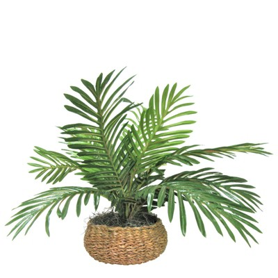 "14"" x 15"" Artificial Palm Plant in Low Basket - LCG Florals"