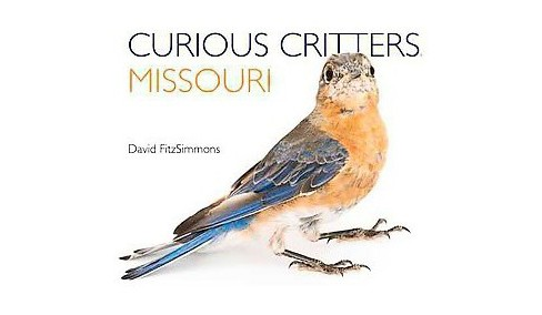 Curious Critters Missouri (Hardcover) (David Fitzsimmons) - image 1 of 1