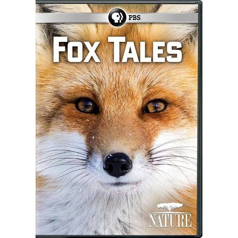 Nature: Fox Tales (DVD) - image 1 of 1
