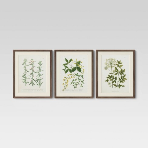 "Set of 3 16"" x 20"" Wall Botanicals Green - Threshold™ - image 1 of 4"