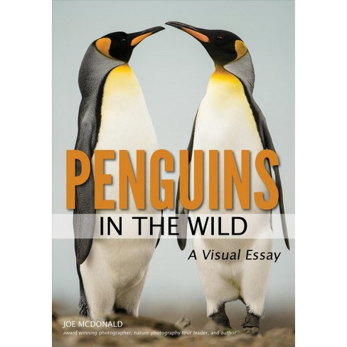 Penguins In The Wild  A Visual Essay  By Joe Mcdonald Paperback  About This Item High School Essay Help also Do My Computer Assignment  Thesis Statement Essay Example