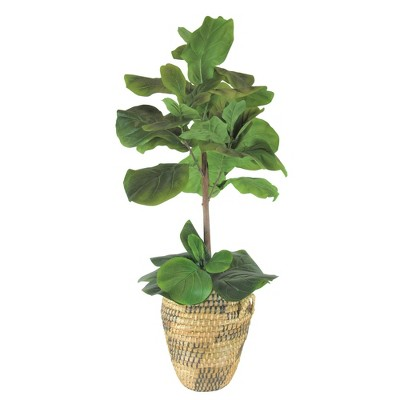 """40"""" Artificial Fig Tree in Natural Basket - LCG Florals"""