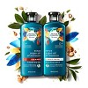 Herbal Essences Bio:Renew Argan Oil Of Morocco Repairing Color-Safe Conditioner - 13.5 fl oz - image 4 of 4