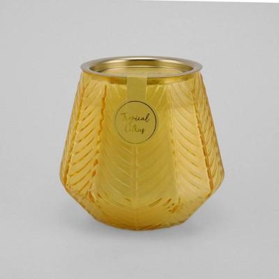 12oz Etched Glass Jar Candle Tropical Citrus - Opalhouse™