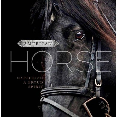 American Horse - by  D a Michaels (Hardcover) - image 1 of 1