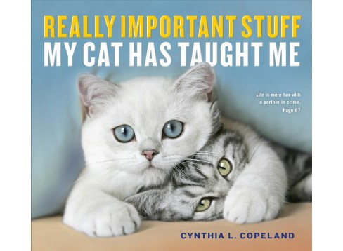 Really Important Stuff My Cat Has Taught Me (Paperback) (Cynthia L. Copeland) - image 1 of 1