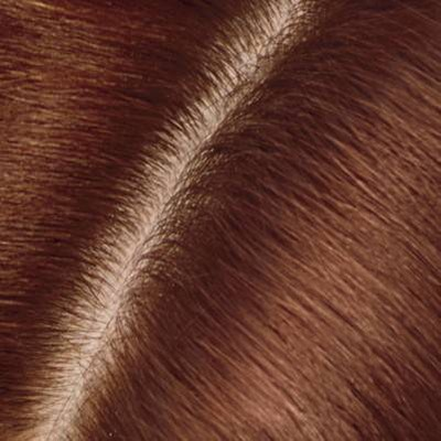 4R Dark Auburn Reddish Brown