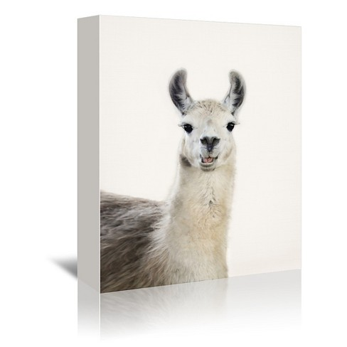 Americanflat Funny Llama By Sisi And Seb Canvas Target