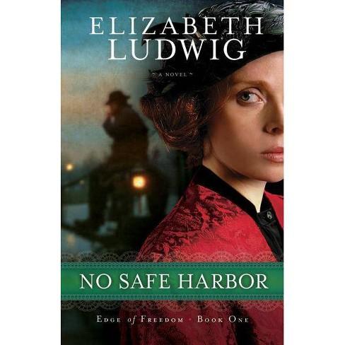 No Safe Harbor - (Edge of Freedom) by  Elizabeth Ludwig (Paperback) - image 1 of 1