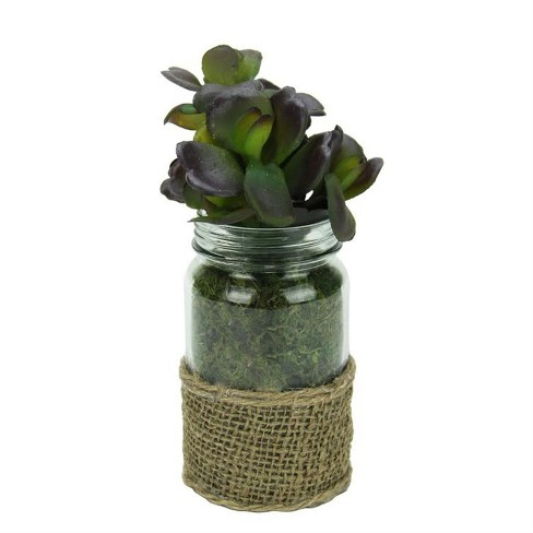 """Melrose 7.5"""" Jade Succulent Artificial Potted Plant in Glass and Burlap Jar - Green/Brown - image 1 of 1"""