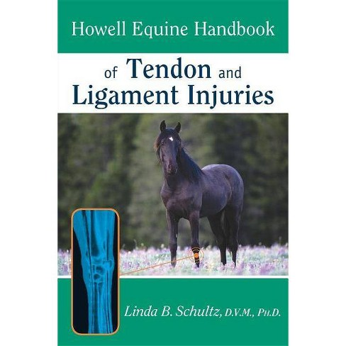 Howell Equine Handbook of Tendon and Ligament Injuries - (Howell Equestrian Library (Paperback)) - image 1 of 1