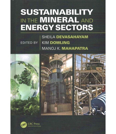 Sustainability in the Mineral and Energy Sectors (Hardcover) - image 1 of 1